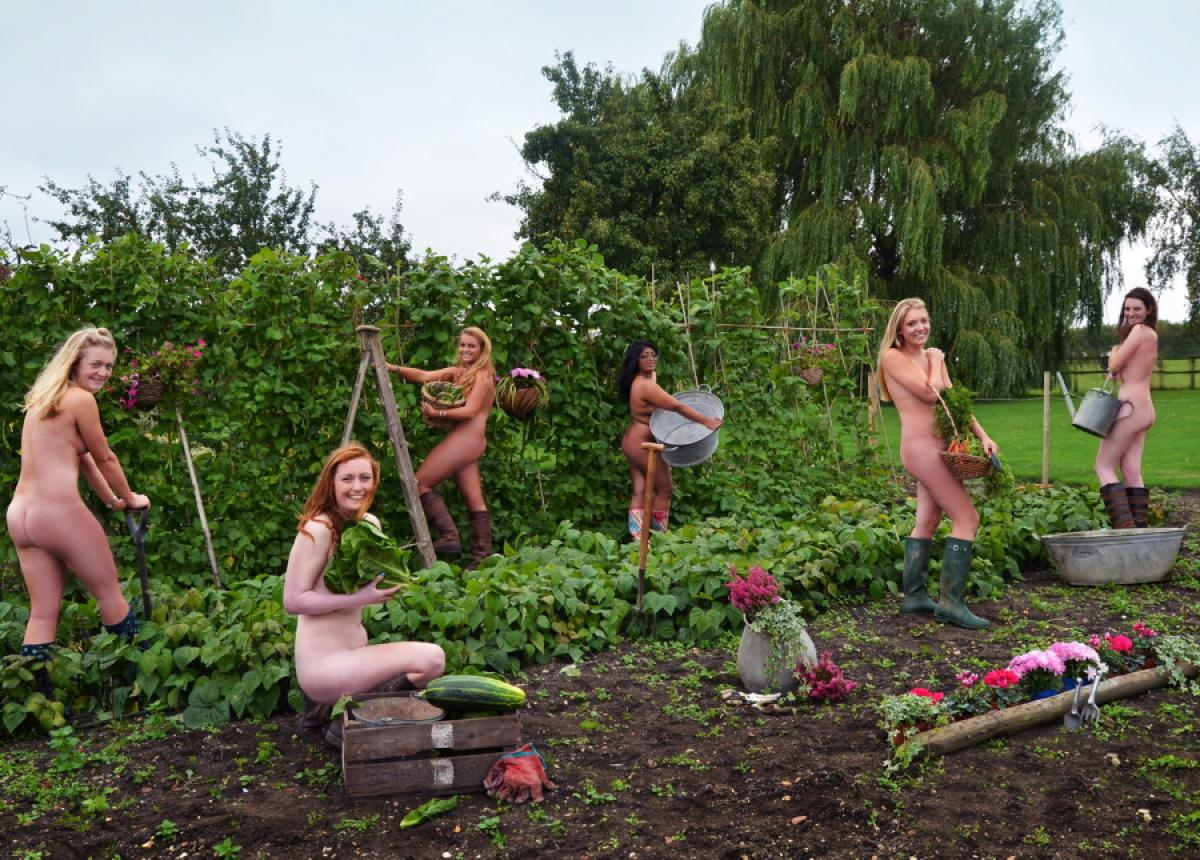 bedfordshire-young-farmers-naked-calendar.jpg