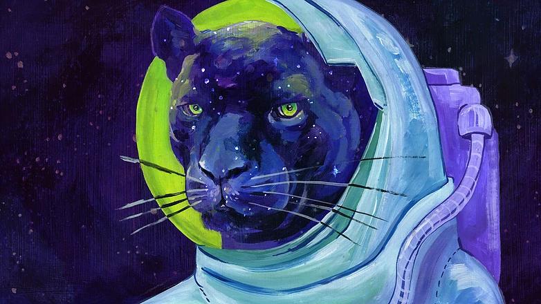 Космическая пантера 1.png