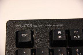 Velator